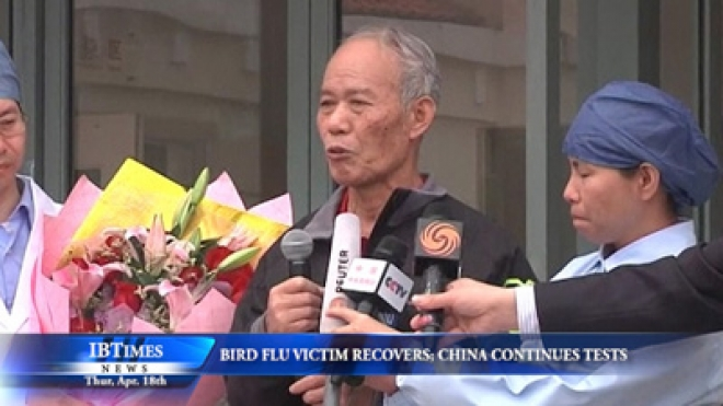 Bird Flu Victim Recovers, China Investigates Possibility Of Human-To-Human Spread