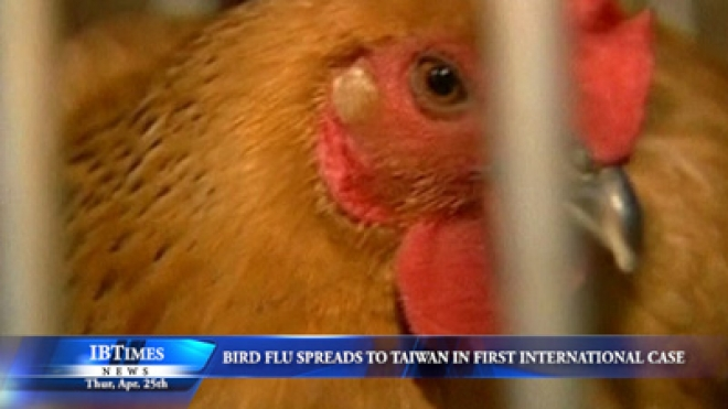 Bird Flu Spreads To Taiwan In First Case Outside Mainland China