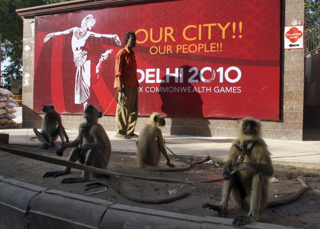 Langur monkeys sit on a pavement near Major Dhyan Chand National Stadium, one of the venues for the Commonwealth Games, in New Delhi September 28, 2010. Langur monkeys are used in parts of New Delhi to scare away other monkeys who create a menace around t