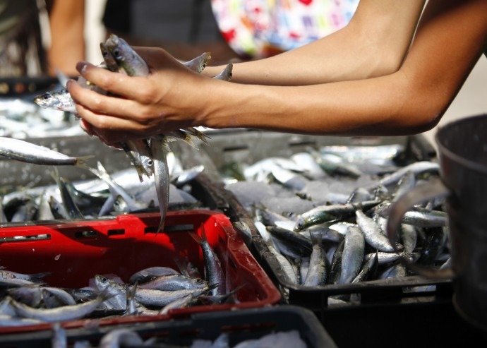 Seafood toxins found in California.