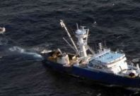 Pirates hijack ship with 29 Chinese sailors: report