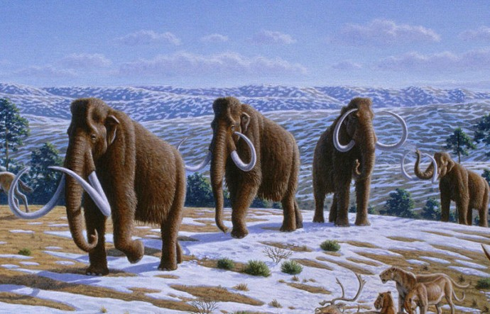Mammoths remains discovered in Russia