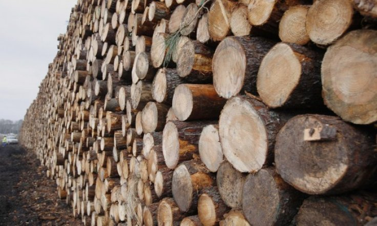 Gillard backs Tasmania's forest reforms but holds back federal funding