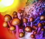 magic mushrooms depression