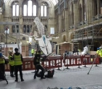 Timelapse Shows The Natural History Museum's Blue Whale Being Assembled