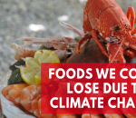 5-foods-that-could-go-extinct-due-to-climate-change